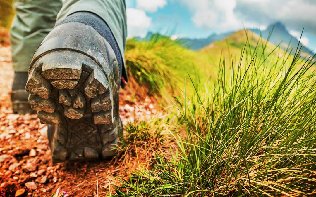 ¿Cuáles son las principales rutas del Camino de Santiago?