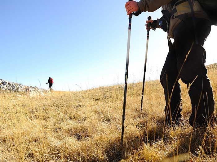 ¿Utilizar bastón / bordón en el Camino de Santiago? ¿Qué opinas?