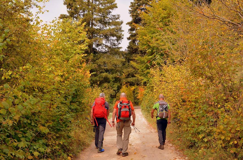 Camino Francés desde roncesvalles, Astorga y sarria