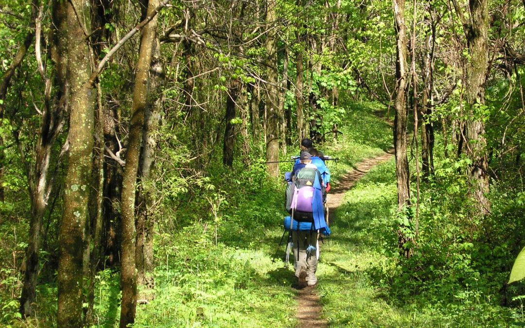 Diferentes motivaciones que te llevarán a hacer el Camino de Santiago el próximo verano