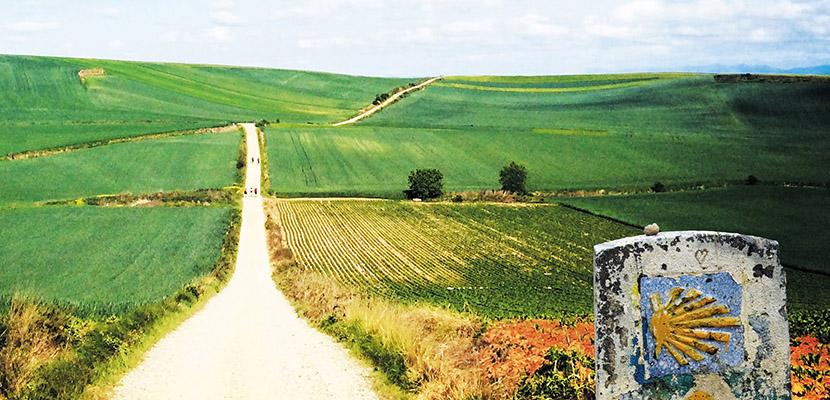 Origen del Camino de Santiago y su peregrinación