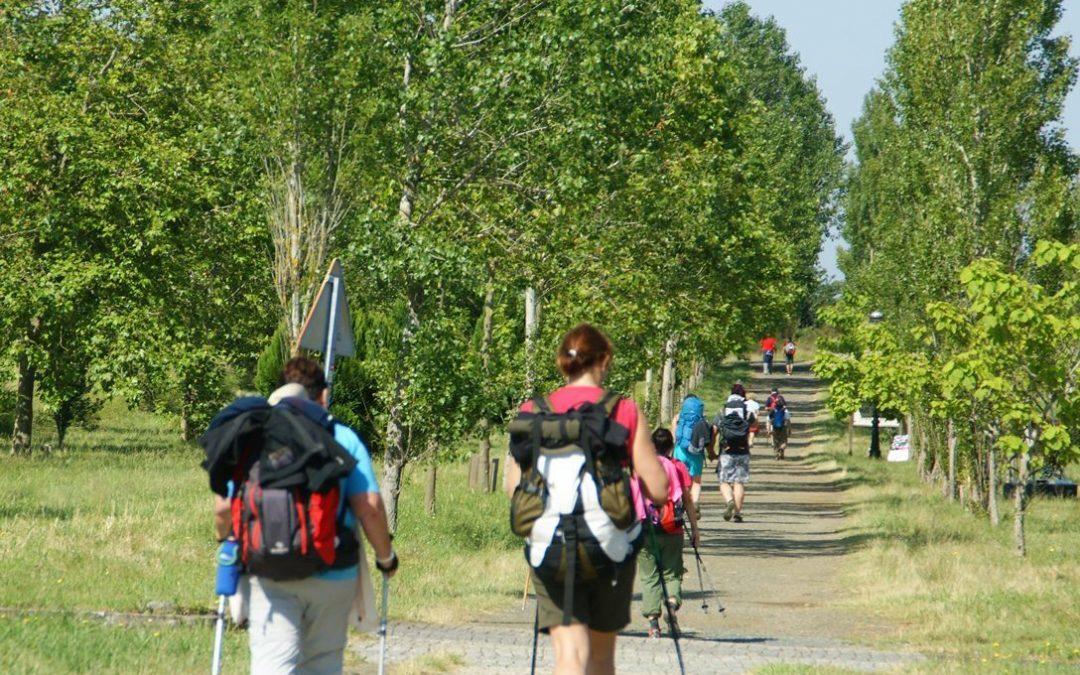 ¿Por qué el Camino de Santiago es consideradoPatrimonio de la Humanidad?