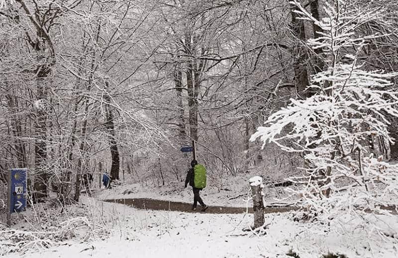 ¿Estás pensando en hacer el Camino durante la época navideña? Apunta estos consejos