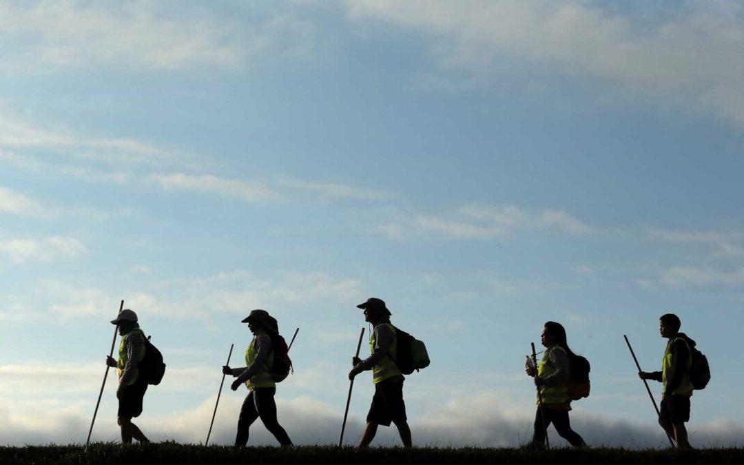 ¿Qué te parece elegir la ruta del Camino de Santiago que vamos a hacer en 2019?
